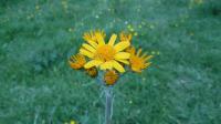 Week.end di primavera in Abruzzo: Trekking nella Terra dei Parchi